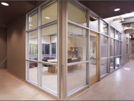 Mahavir Aluminium Curtain Wall Glazing